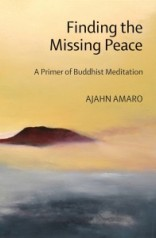 finding-the-missing-peace